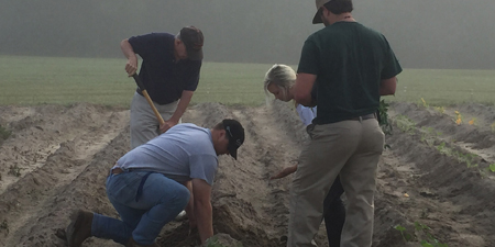 Ag students in field